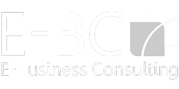 Logo E-business consulting white